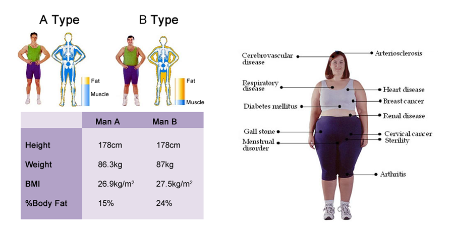 Body Composition Analyaia